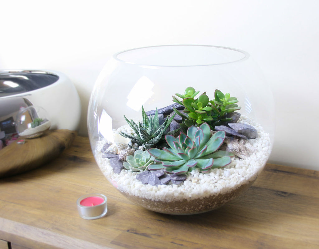 Slate and gravel terrarium from The Art of Succulents