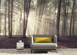 nature Wall Decor, Forest Oho Mural Wallpaper (m²), beautiful natural decor, nature inspired designs, best home decor, Forest Homes