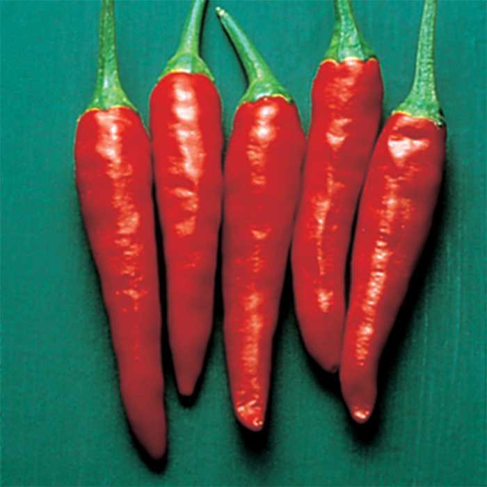 Pepper Super Chili- IN STORE PICK-UP ONLY