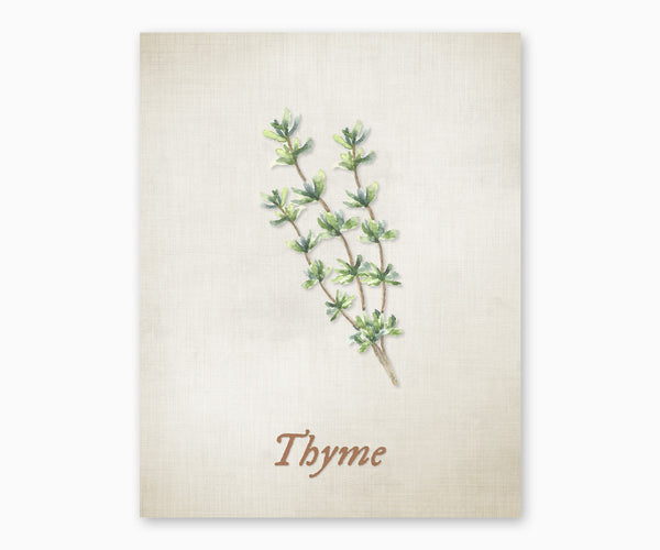 Thyme Vintage Kitchen Wall Art