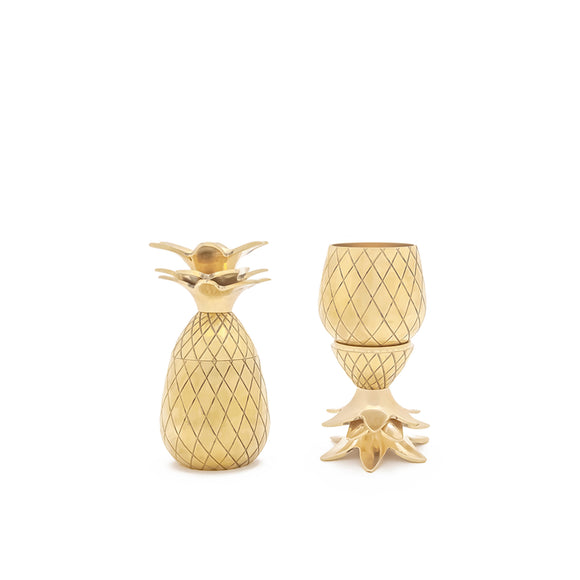 Pineapple Shot Glass Set by W & P Design