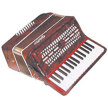 Accordions 24 Bass Accordion with case and straps