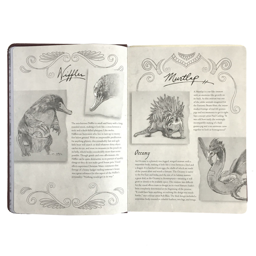 Fantastic Beasts: Creatures Sketchbook