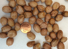 raw peanuts to buy, medium jumbo sized peanuts, runner variety, for candy making and peanut brittle