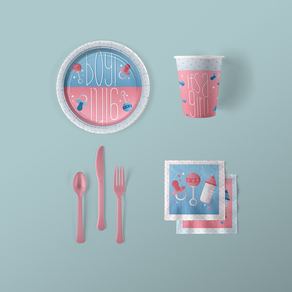 Boy or Girl Gender Reveal Baby Shower Party Pack with Plates, Napkins, Flatware and Cups