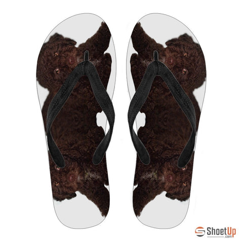 Spanish Water Dog Men Flip Flops - Free Shipping