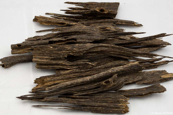 Buy Best Quality Oud Wood Online from Assam India