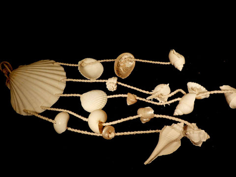 Windchime - Scallop, White Shells