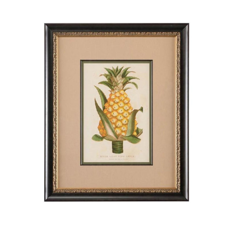 Sugarloaf Pineapple Botanical Print - The Shops at Mount Vernon - The Shops at Mount Vernon