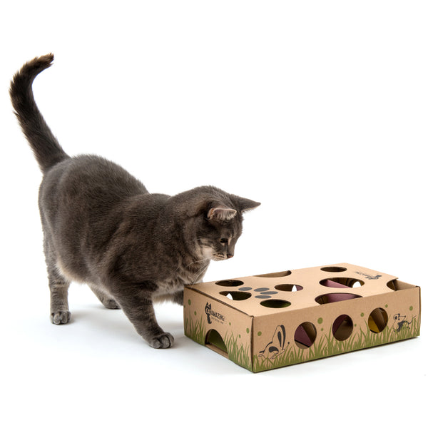 Cat Puzzle Feeder Buying Guide
