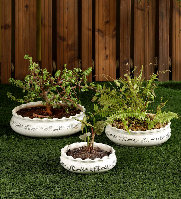 Ceramic White Planter Round Pot Set of 3 Trays