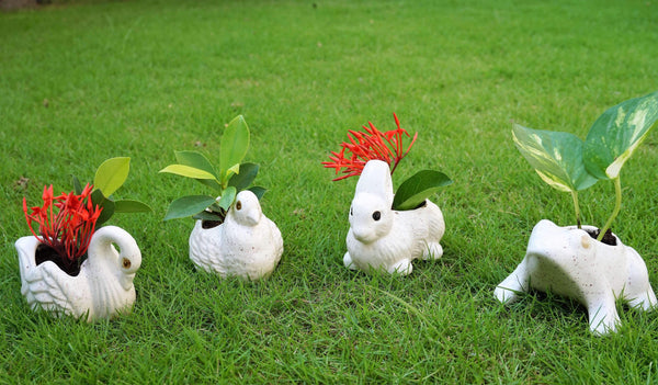 White Colored Ceramic Hand Crafted Miniatures Swan, Pigeon, Rabbit, Frog Flower Pots (Set of 4)