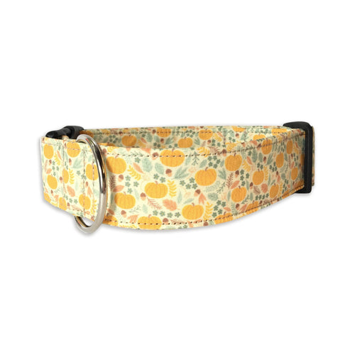 Pumpkins & Acorns Collar