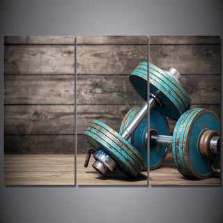 HD Print 3 Piece Canvas Art Dumbbells Fitness Bodybuilding Gym Painting Wall Art
