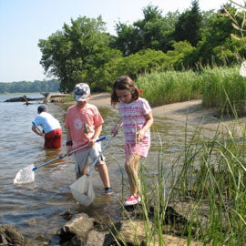 River Explorers Camp - August 5 - 9 (ages 6 - 8)