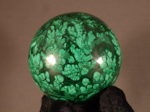 Polished Congo Flower Malachite Sphere - 58mm, 344g