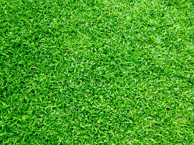 Landscaping: Free From Artificial Turf Melting