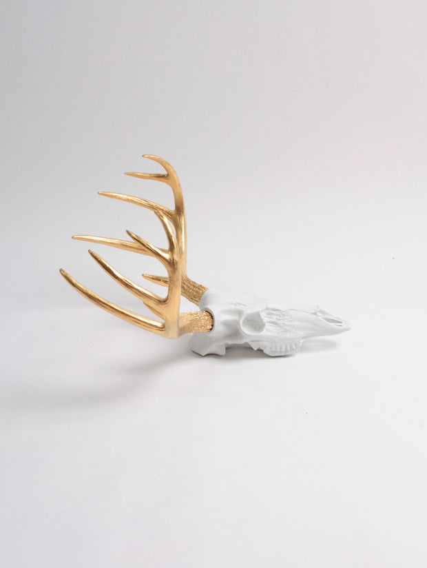 Mini White & Gold Faux Deer Skull | Stag Skeleton | White & Gold Resin