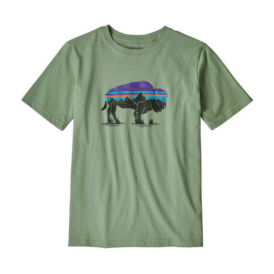 Patagonia Boys' Graphic Organic Cotton T-Shirt - Fitz Roy Bison
