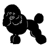 Poodle Car Sticker