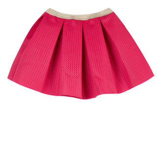 Greenfield Rasberry Mesh Skirt