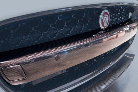 Jaguar F-Type Grill Bar Carbon Fiber - (1PC) 2014-2016