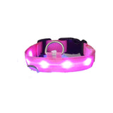 Bright LED Dog Collar For Night Safety