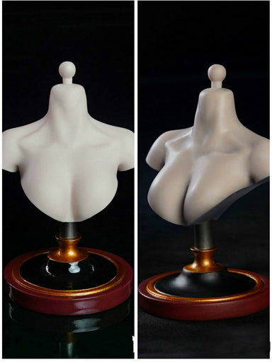 Pre-order 1/6 SUPER DUCK Female bust stand C025