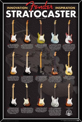 Fender Stratocaster Evolution Electric Guitar Chart 24x36 Poster