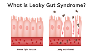 What Is Leaky Gut Syndrome Podcast | Conquering Pyroluria