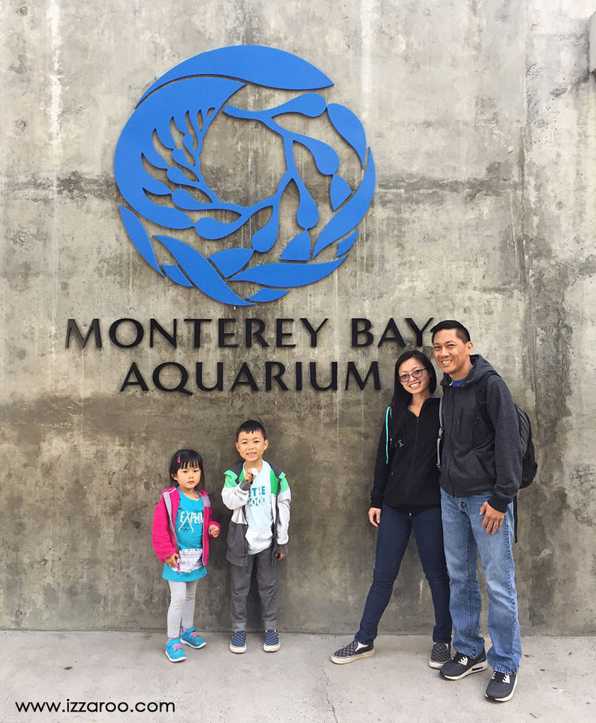 Travel Tips for Visiting the Monterey Bay Aquarium