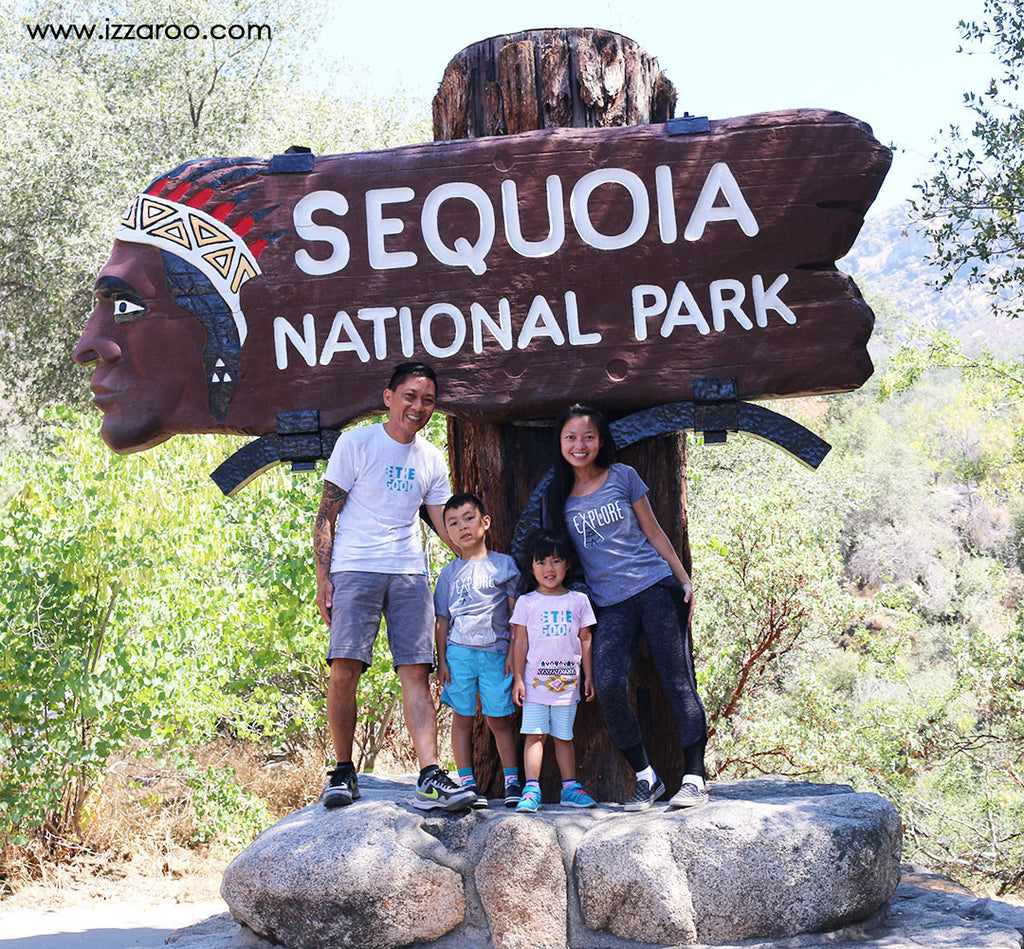 Travel Tips for Exploring Sequoia National Park with Kids