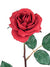 "Planters Rose Stem - 23"" Tall - Box of 12 - Choice of Color"