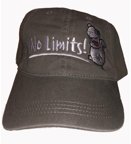 No Limits Dad Hat