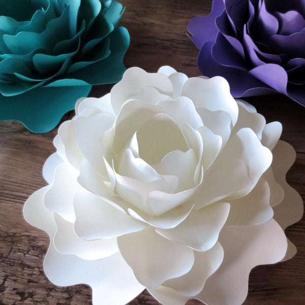 Flowers & Plants - Oversized Paper Peonies