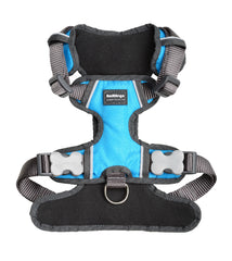 Red Dingo Padded Dog Harness (Turquoise)