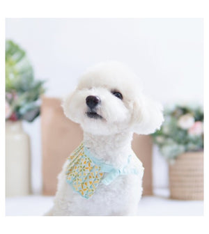 Ohpopdog Blue Tiles Cape Dog Apparel