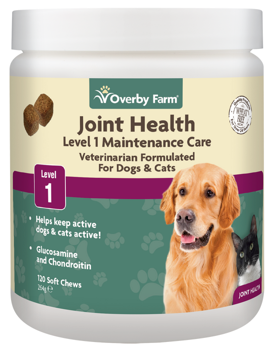 Joint Health Level 1 for Dogs & Cats Soft Chew 120pcs