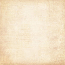 Bella Textured Photo Backdrop - Cream Backdrops Melanie Hygema