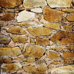 Stone Photo Backdrop - Rockin' Orange Backdrops,Floordrops Loran Hygema