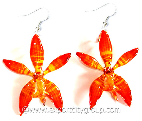Staurochilus Fasciatus Bengal Tiger Orchid Jewelry Earring (Orange)