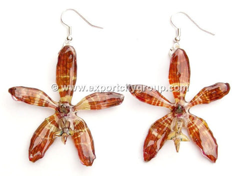 Staurochilus Fasciatus Bengal Tiger Orchid Jewelry Earring (Brown)