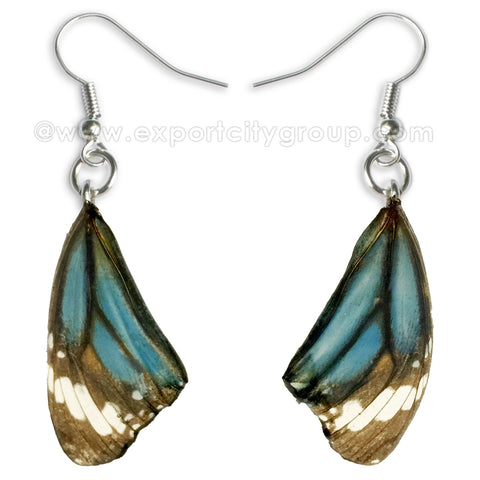 Real Butterfly Wings Jewelry Earring - Monarch blue