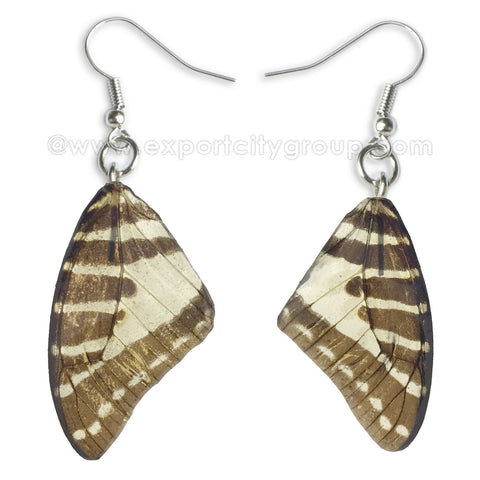 Real Butterfly Wings Jewelry Earring - Graphium natural