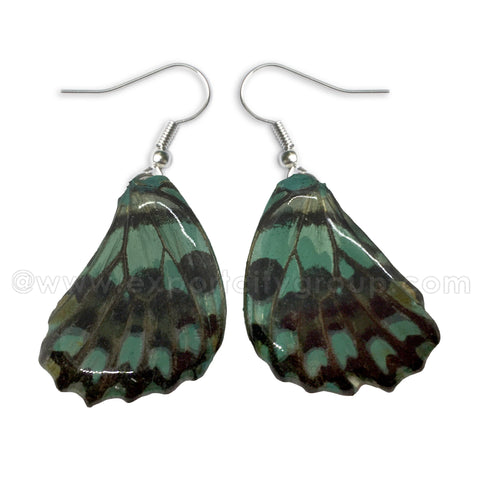 Real Butterfly Wings Jewelry Earring - WG02 Dyed Light Green