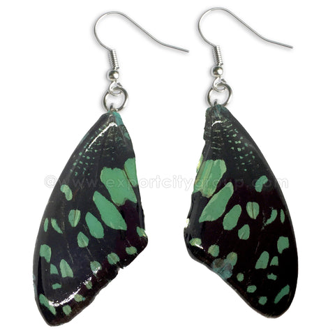 Real Butterfly Wings Jewelry Earring - WG01 Dyed Light Green