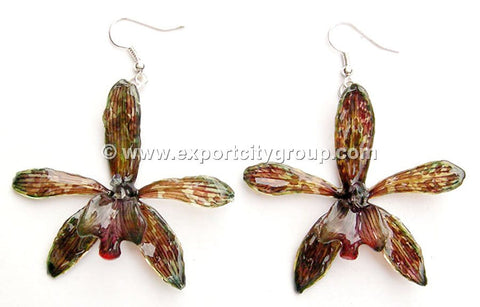Tiger CAT Tiger Orchid Jewelry Earring (Brown)