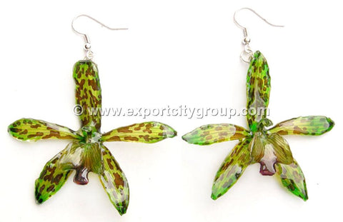 Tiger CAT Tiger Orchid Jewelry Earring (Green)