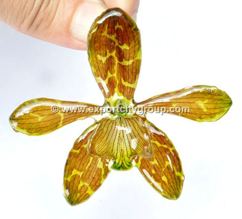 Tiger CAT Tiger Orchid Jewelry Pendant (Yellow)