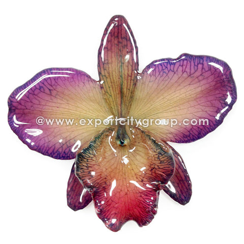 Cattleya Sakura Medium Orchid Jewelry Pendant (Purple)